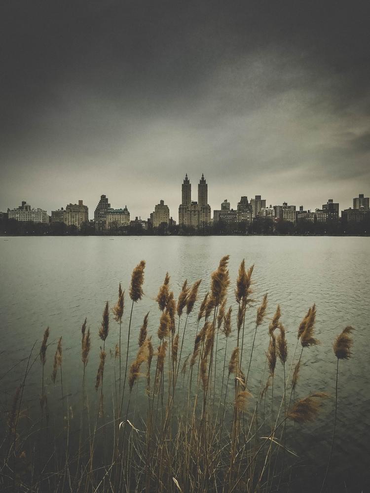 Centralpark, Newyork, Newyorkcity - defiiantt | ello
