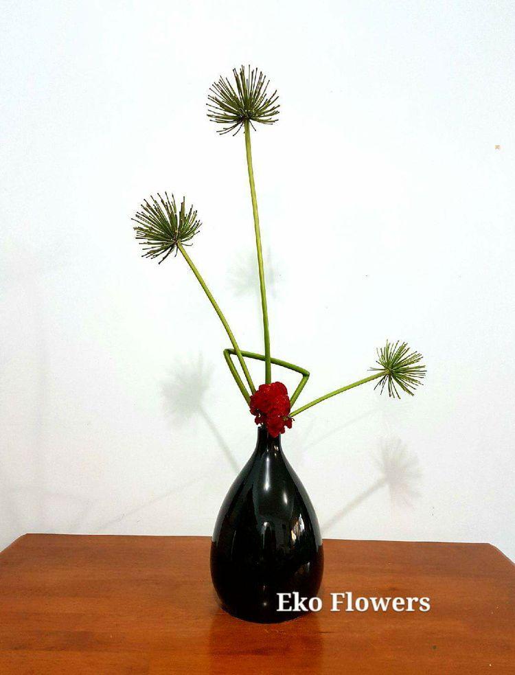 ikebana, design, agapanthus, celosia - ekoflowers | ello