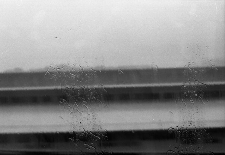 | Rained - 35mm, film - preserved | ello