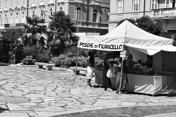 Day day. Triest, Italy, 2017 - ivanlich | ello