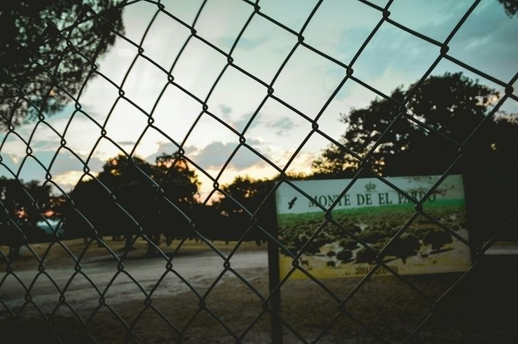 Monte del Pardo - fence, dusk, sky - rublexx | ello