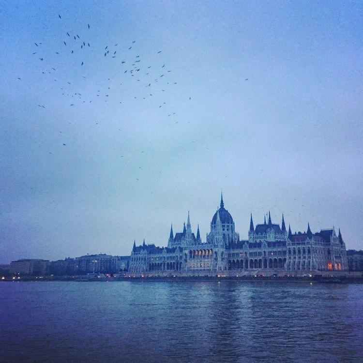 Budapest - Hungary feb.18 - joffreycarpentier | ello