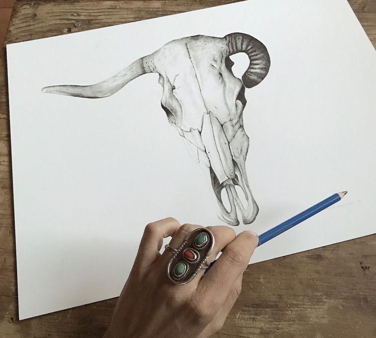 Skull 1   12x16 graphite 2018 - illustration - magdalenasoko   ello