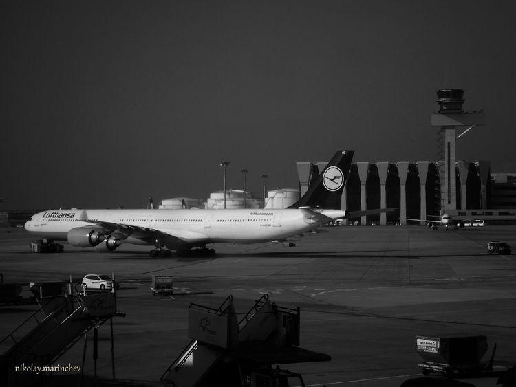 Lufthansa FRA, Frankfurt Int Ai - niki_m | ello