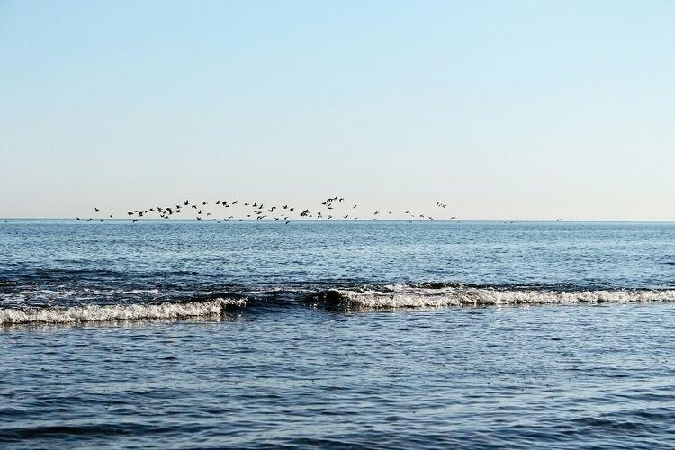 Paceful:ocean::sparkles - photography - monicaponzo | ello
