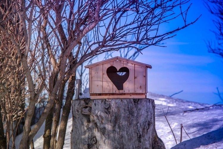 Captured love rigi - mountainlover - travel-cristellicious | ello