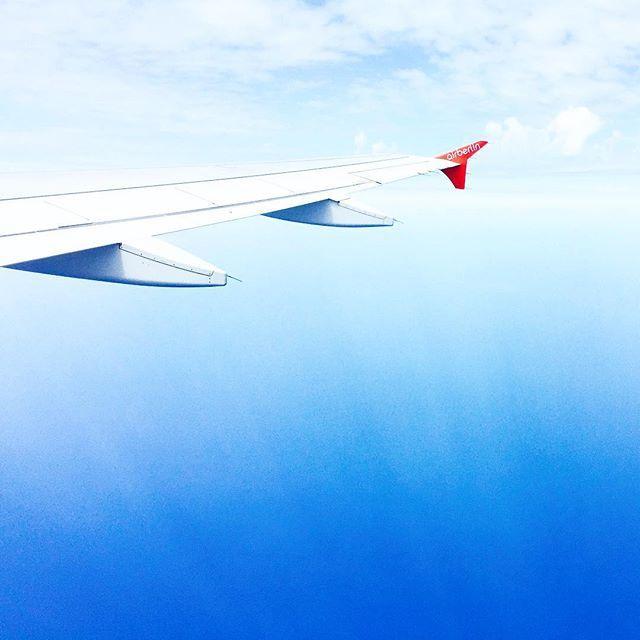 fly globe - wing, plane, airplane - teufelchristoph | ello