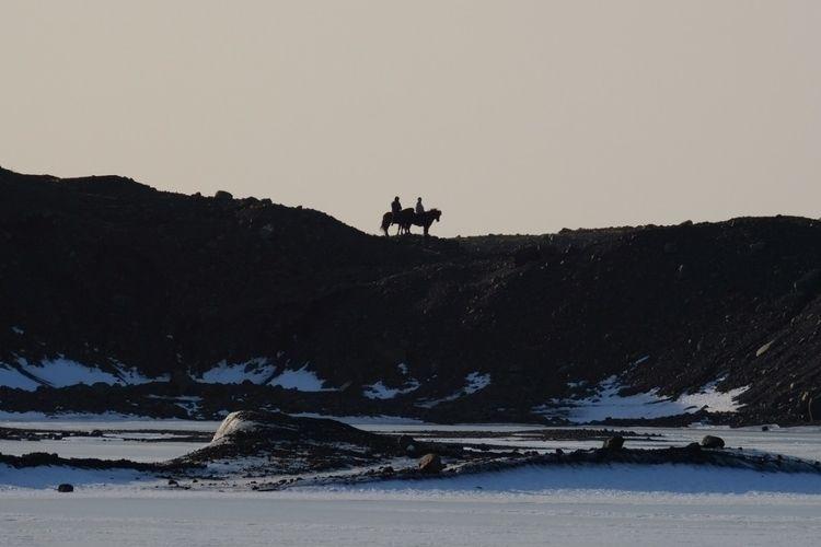 ICELAND HORSE - icelandair, iceland - shunlung_lin | ello