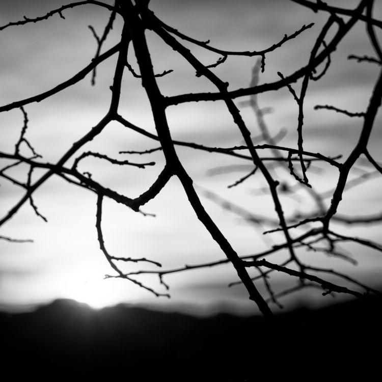 Sunset, Italy, Friuli, blackandwhite - ryanopaz | ello