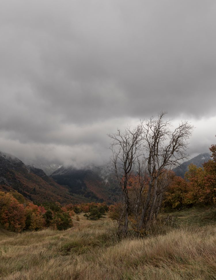 quiet meadow mountains Utah - stormy - spikeyjohnson | ello