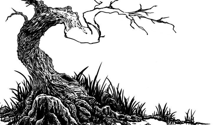 Work progress study trees trunk - sarin-poladian | ello
