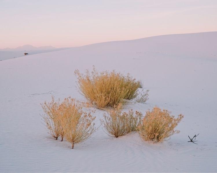 White Sands National Monument - photography - depetris   ello