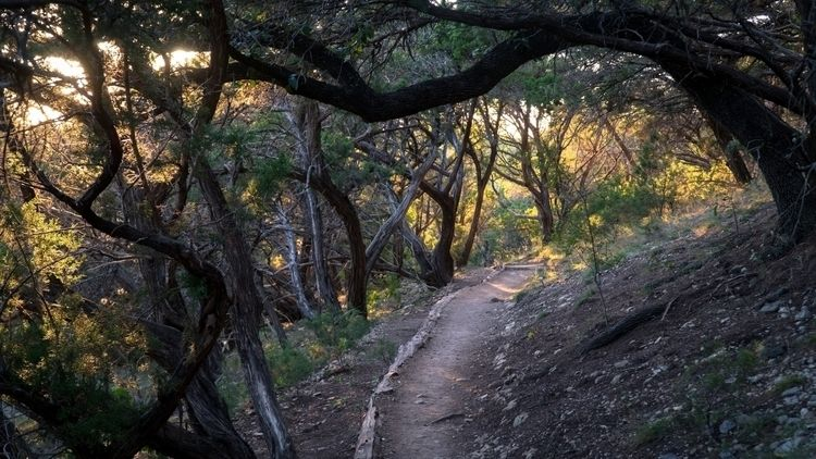 love city nice quiet - nature, landscape - mraybin   ello