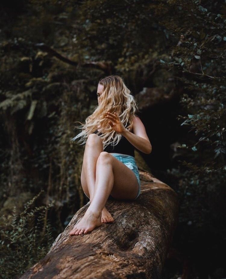 fairy - woodlands, newsouthwales - hollielicious   ello