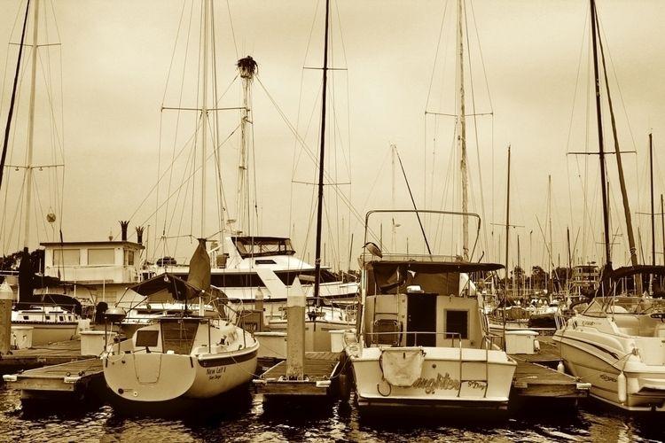 marina boats - boat, sailing, blackandwhite - afardo | ello