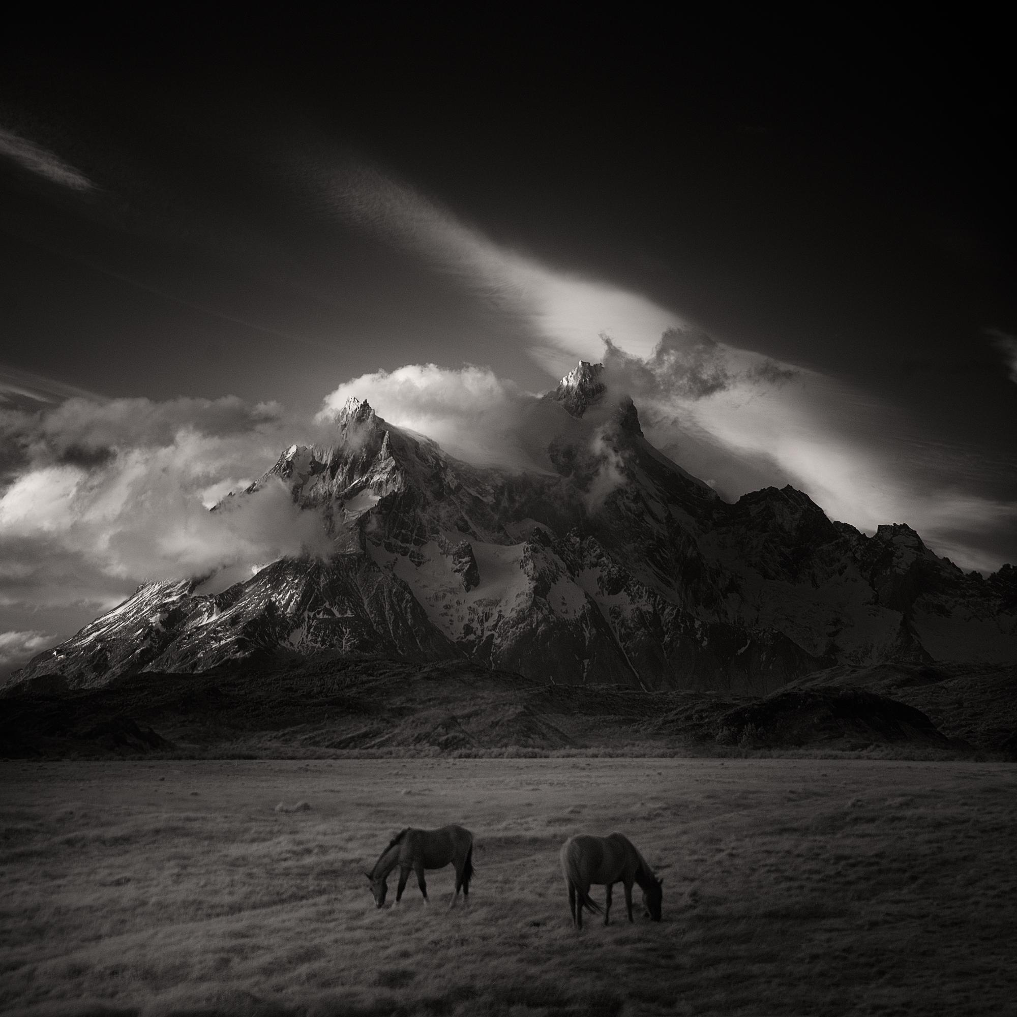 > horses - infrared, patagonia - andyleeuk | ello