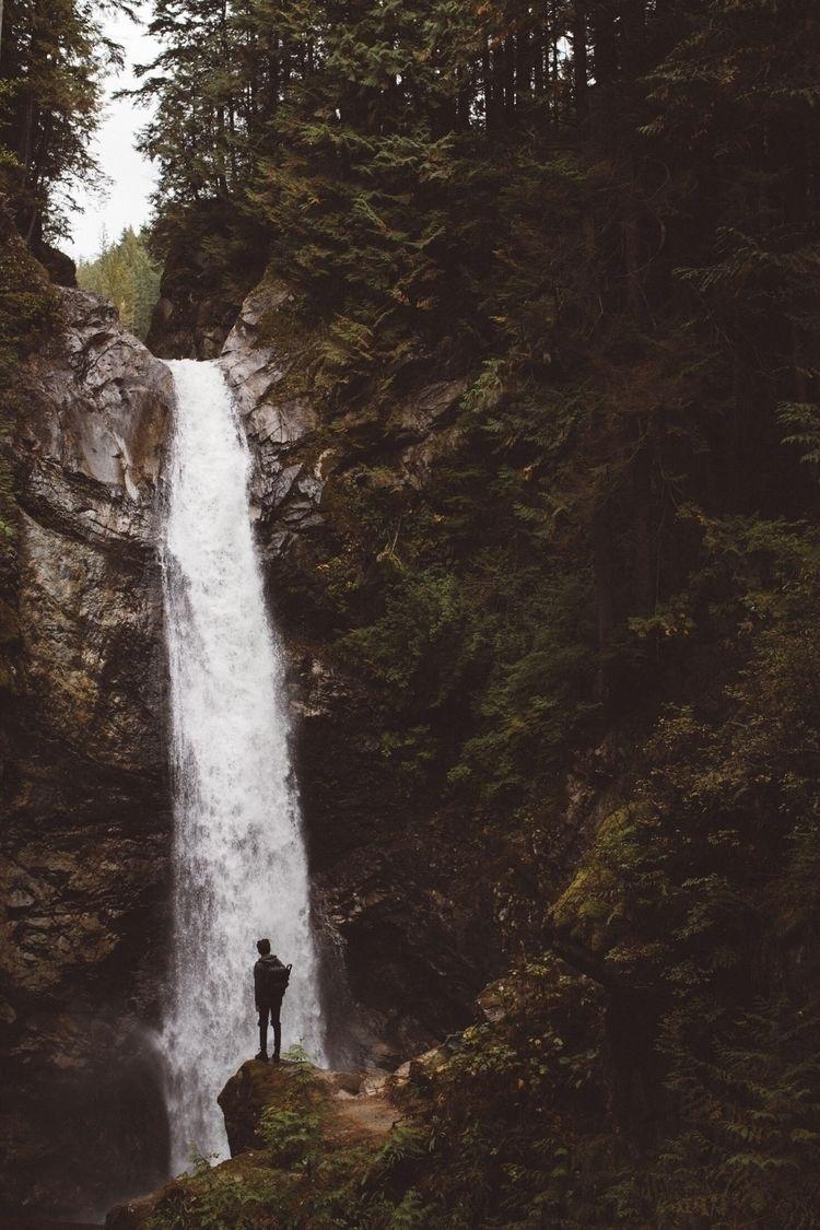 Fallen - photography, nature, explore - noahnakamura | ello