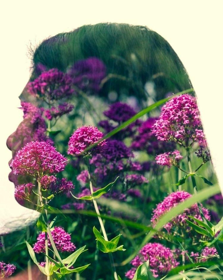 doubleexposure, pink, ellophotography - rajeevnz | ello