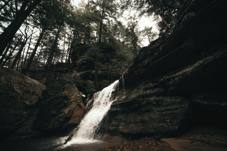 Cedar falls - adventurevisuals, lookslikefilm - mackenziepackham | ello