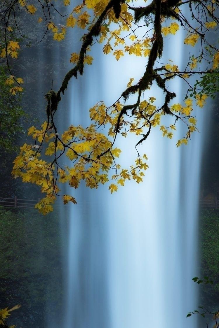 Silver falls fall colors!  - oregon - samsnaps | ello