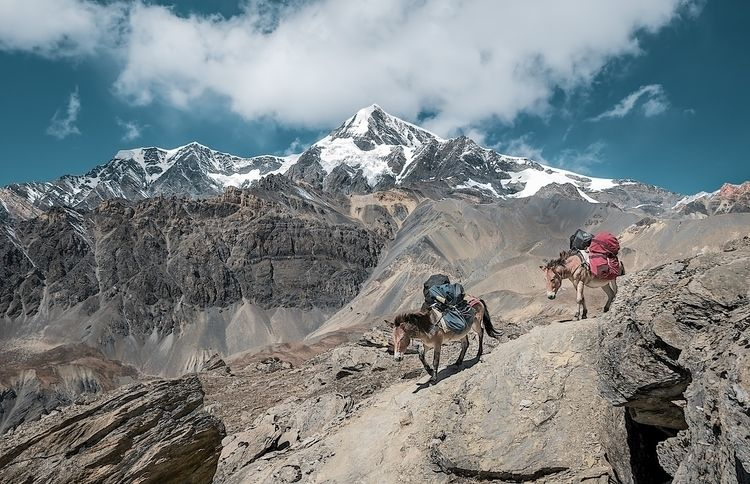 hiking. hike high altitude; tir - 8moments   ello