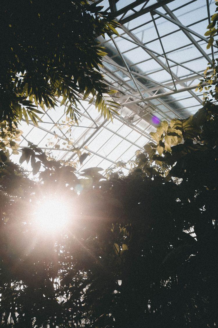 Botanischer Garten - julian_wildner | ello