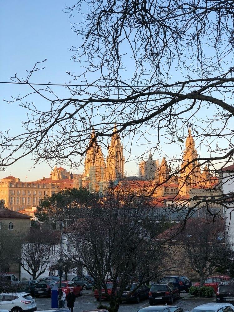 Catedral de Santiago shinning l - laureanolojo | ello