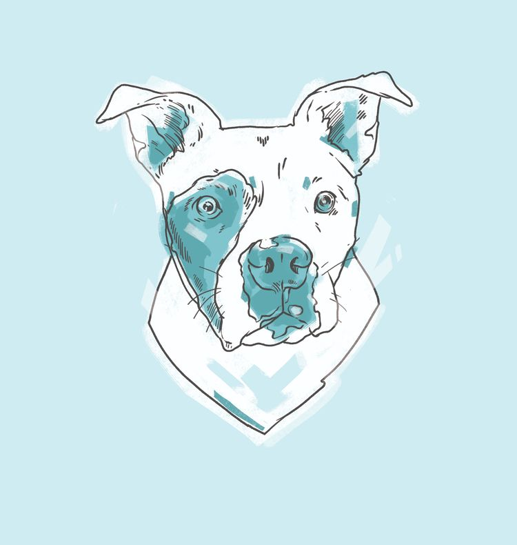 sweet mug - pitbull, illustration - ketchwehr | ello