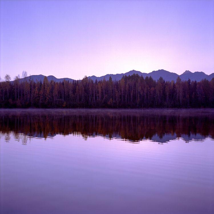 University Lake Mamiya C330 Kod - danielregner | ello