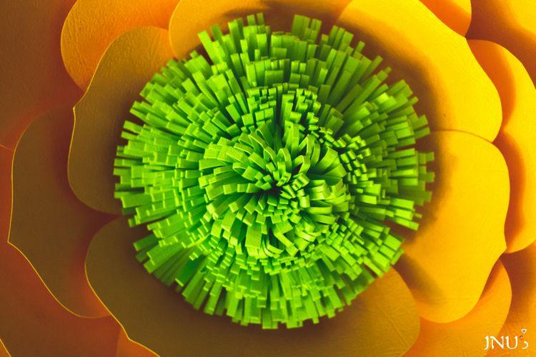 Más colores.~ - editing, Lightroom - j_nyum | ello