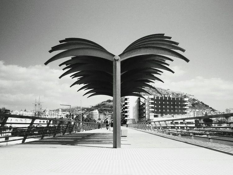 photography, blackandwhite, street - monicaponzo | ello