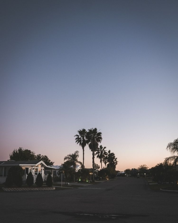 fav time day - sunset, palmtree - marcantoine_vachon | ello