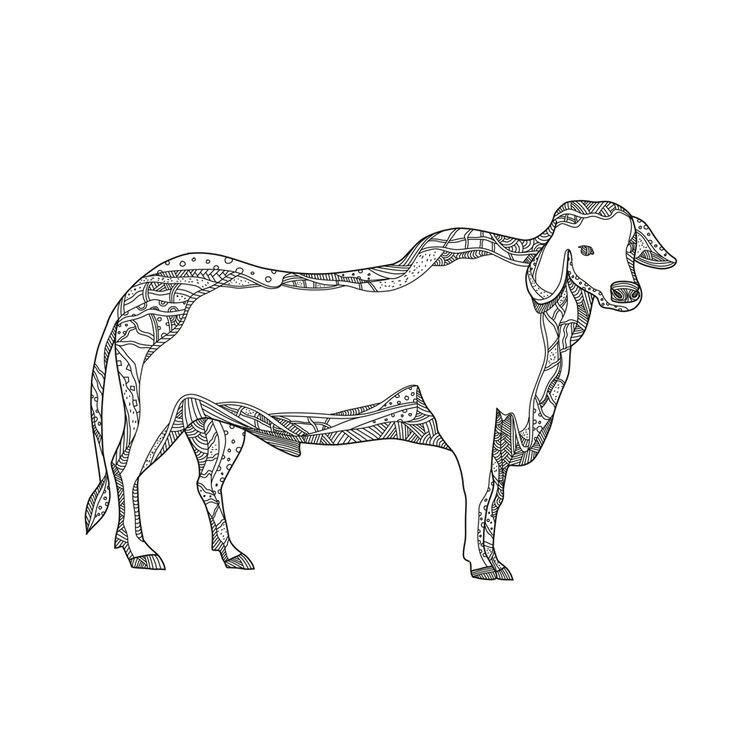 Brahman Bull Side Doodle - BrahmanBull - patrimonio   ello