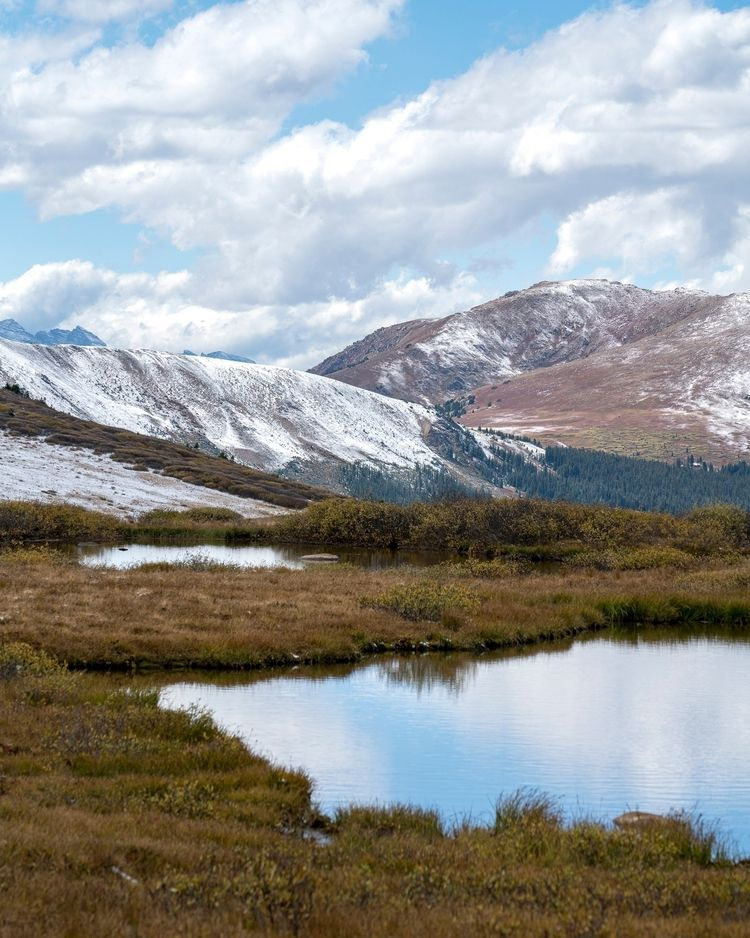 landscape alpine tundra 2017 /  - fieldtrip | ello