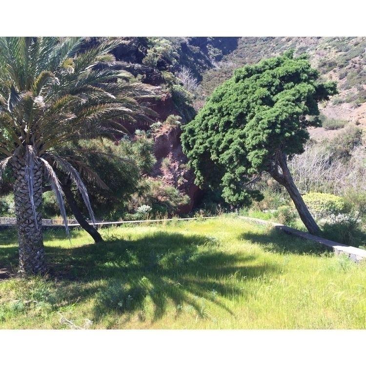 Sicily, Italy, nature - madebyfelix | ello