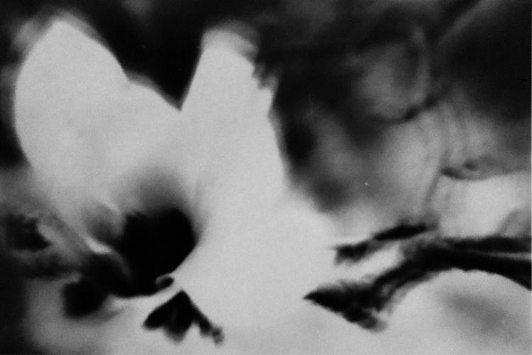 work darkroom - jutta-maria | ello