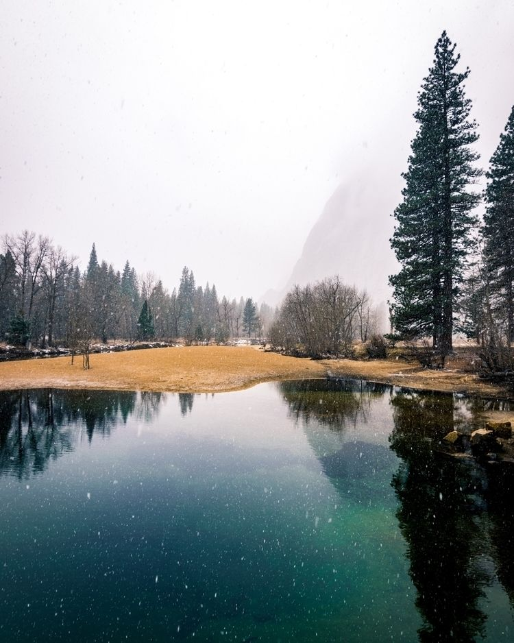 winter Yosemite :snowflake:️  - earth - teddymorrow | ello