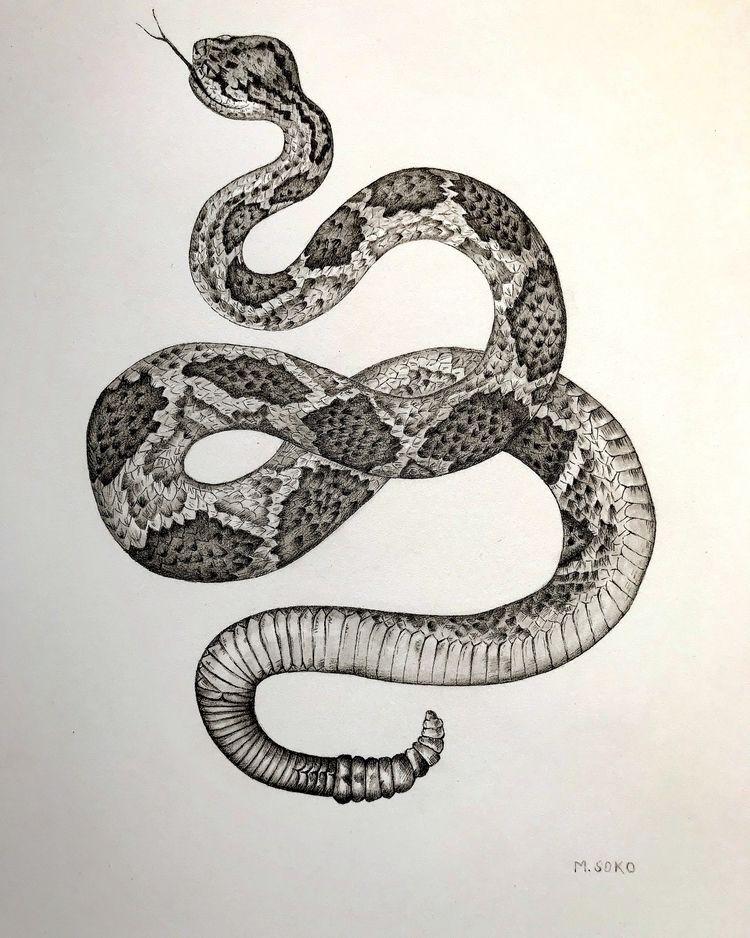 9x12 | ink graphite |2017 - drawing - magdalenasoko | ello