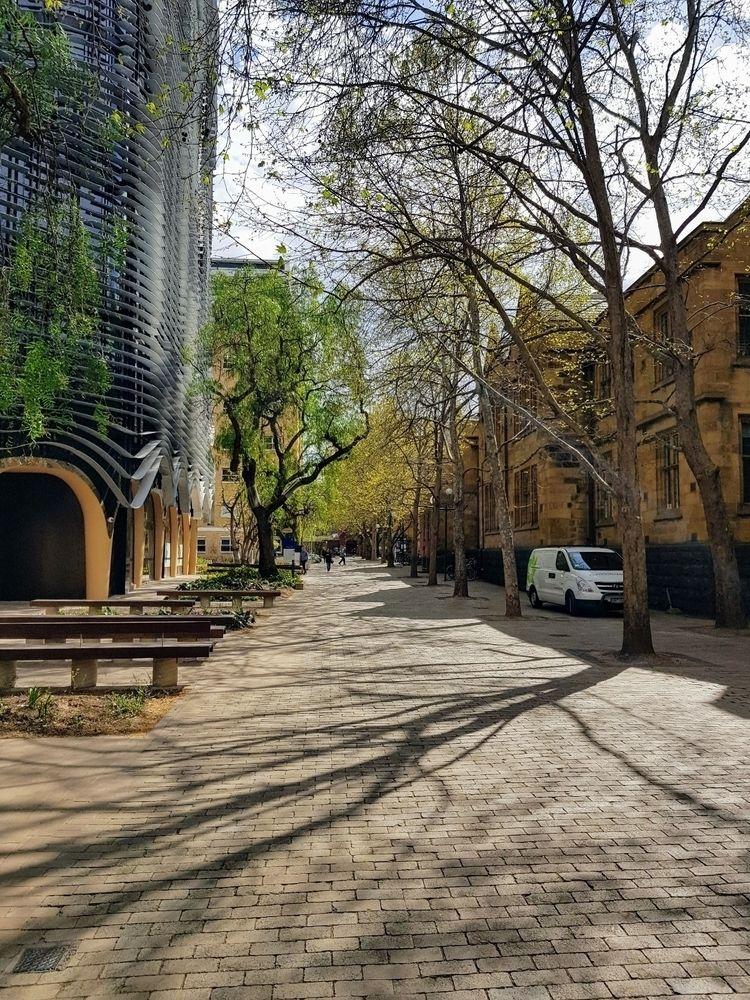 walk, arts University Melbourne - sezzyharris   ello