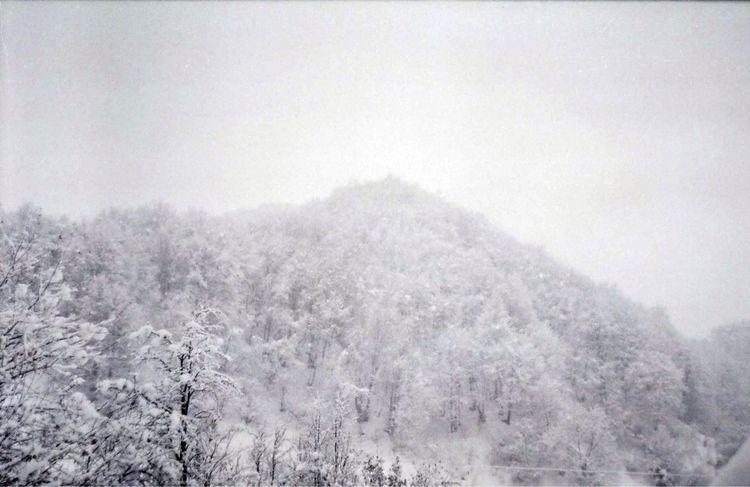 Kvemo Mleta, Georgia - filmphotography - tatao   ello