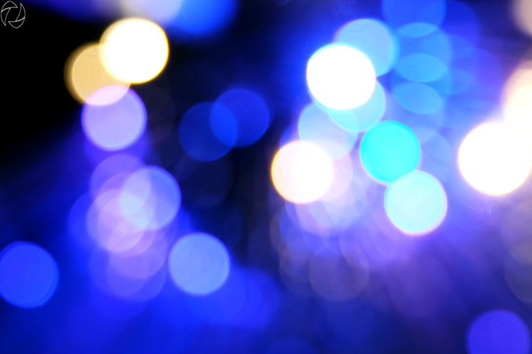 lights, macro lens intended pur - jung_photo | ello