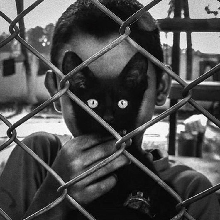 creatures, slave leash. cat. ma - nunich   ello
