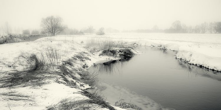 Frozen riverbank - snow, river, reeds - toni_ertl | ello