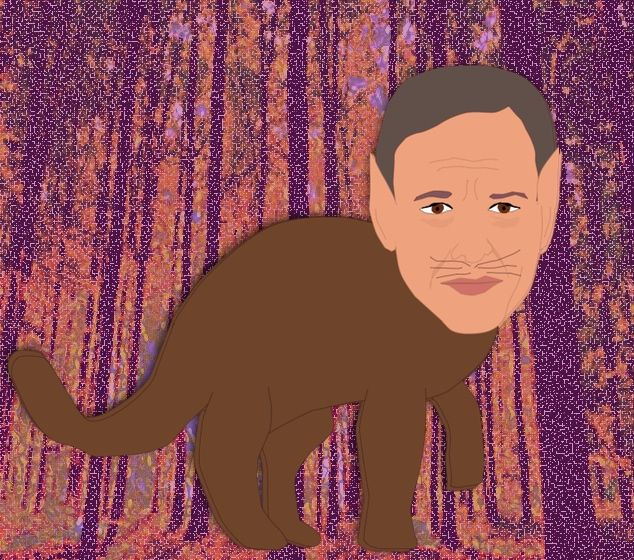 =.=.=.=.= - cat, art, JakeTapper - coochdawg   ello