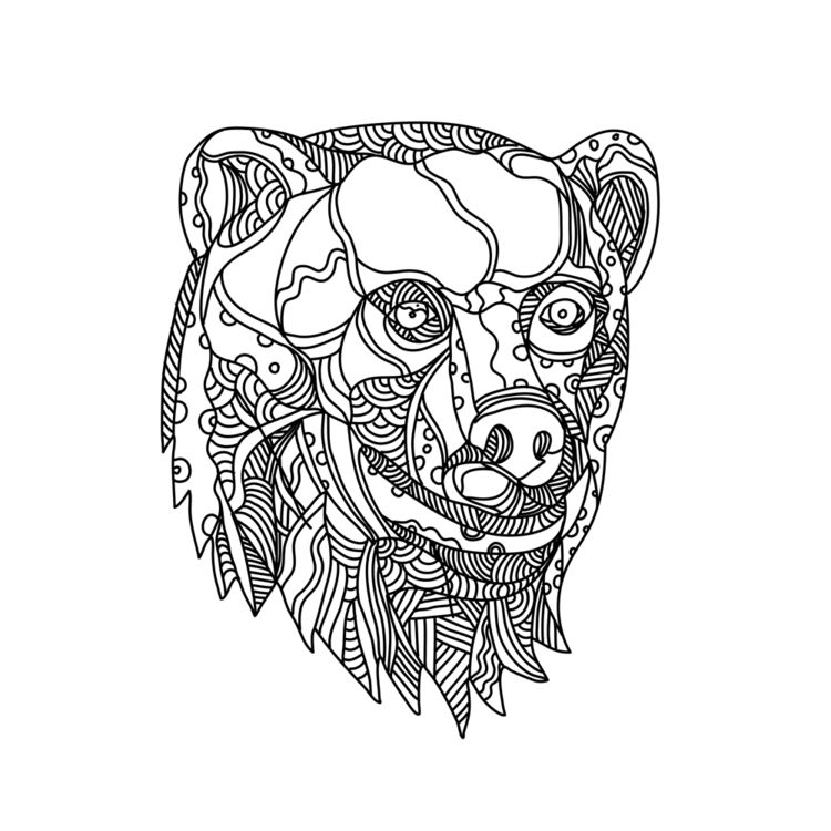 Brown Bear Head Doodle - BrownBear - patrimonio | ello