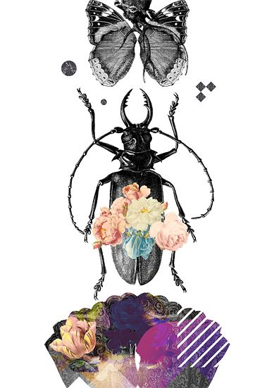 Beetle, 2018 Digital print - wito | ello