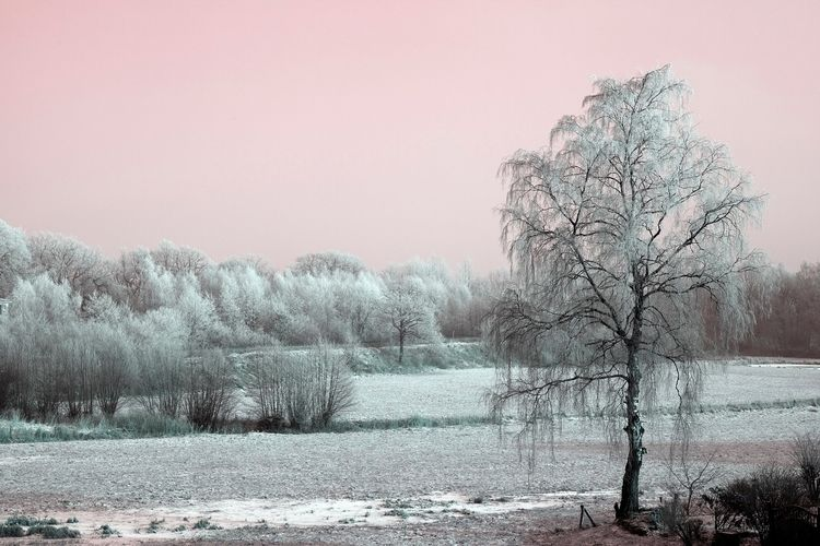 germany touch color - winterland - hgwest | ello