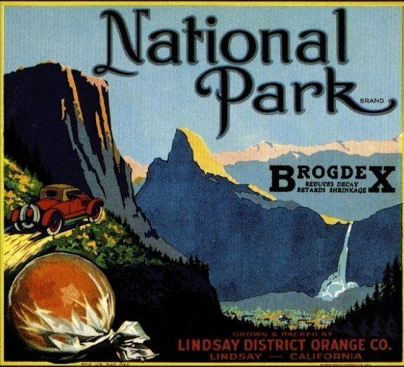 Lindsay Lindsay - broodingsquid | ello