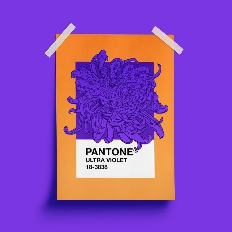PANTONE Ultra Violet color year - zen4 | ello