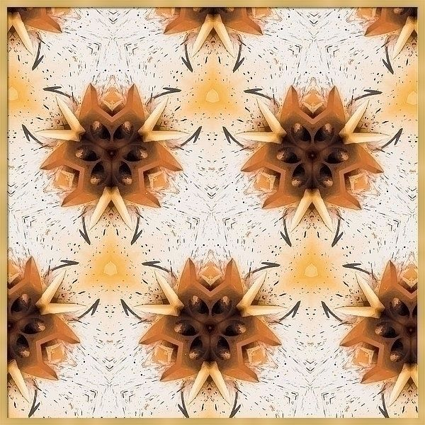 Desert Flower 2 SkyeCreativeArt - skyecreativeart | ello